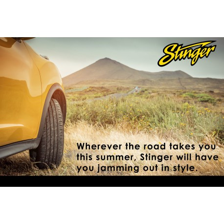 Stinger Road Trip