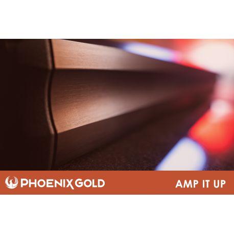 PG Amp 1