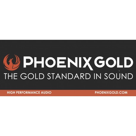 Phoenix Gold 2.5' x 6' Banner
