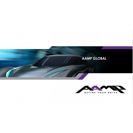 AAMP Overview Widescreen