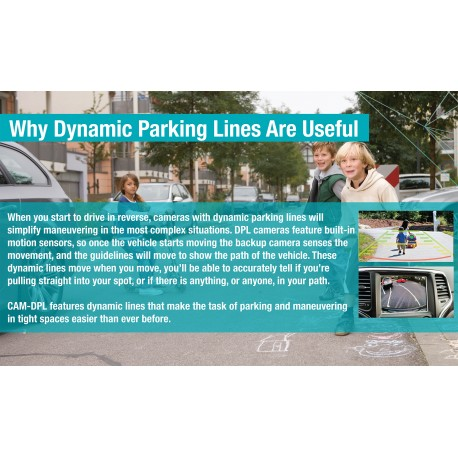 """Why Parking Lines are Helpful"" Panel"