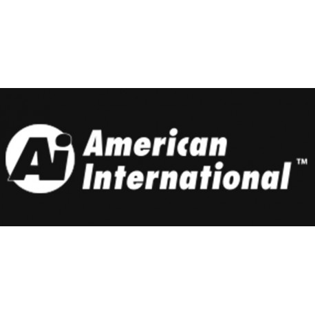 American International White PNG